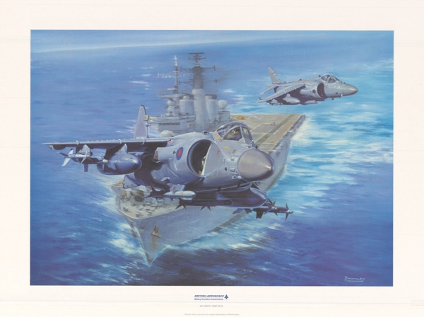 Sea Harrier leading the way - Military Times - Mark Bromley