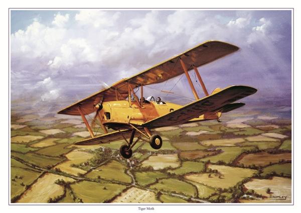 Tigermoth - Military Times - Mark Bromley