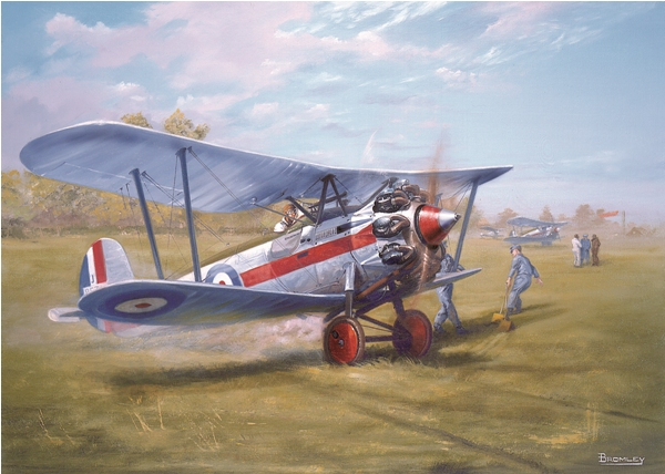 Bristol Bulldog biplane picture- Military Times - Mark Bromley
