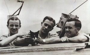 Simon-the-cat_opt