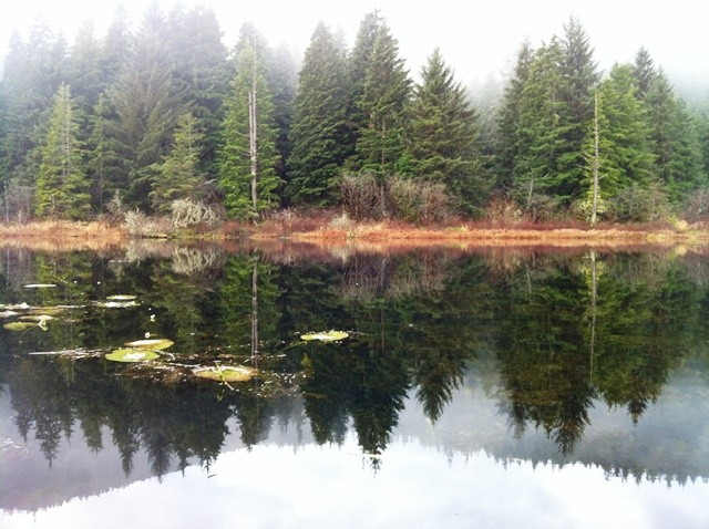 US Military Campgrounds and RV Parks  Jim Creek Recreation Area