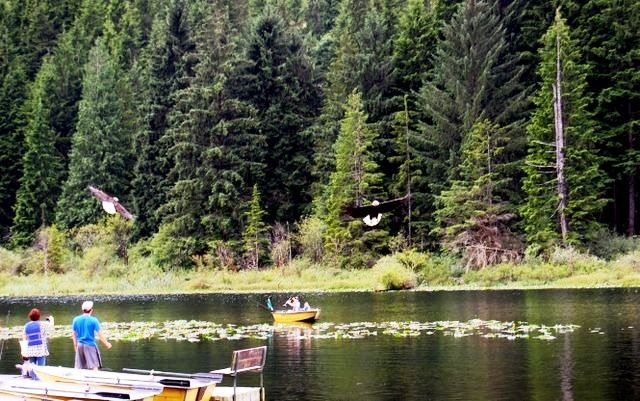 US Military Campgrounds and RV Parks  Jim Creek