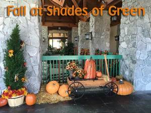 Shades of Green Spooky Savings in October Special 2017