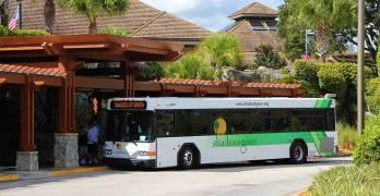 ID Checks on Shades of Green Buses