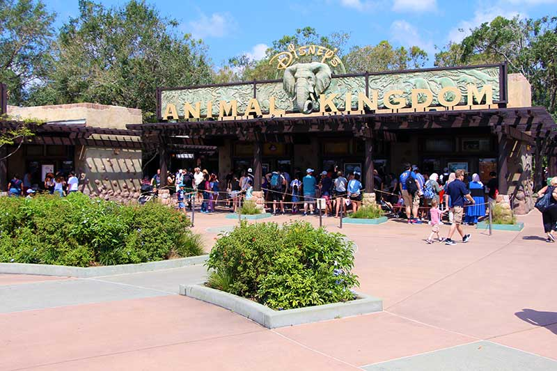 How to Activate Your Disney Armed Forces Salute Tickets