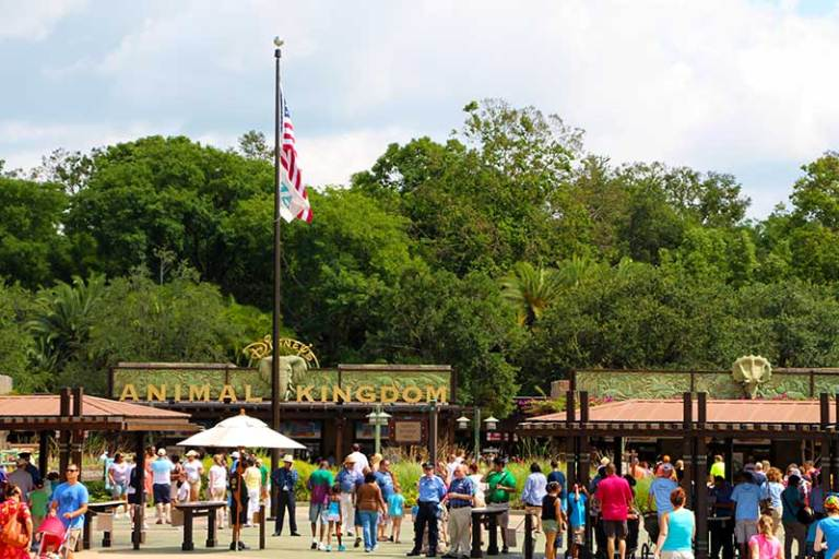 The Disney's Animal Kingdom Security Checkpoint