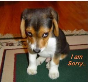 I-Said-NaI-am-Sorry