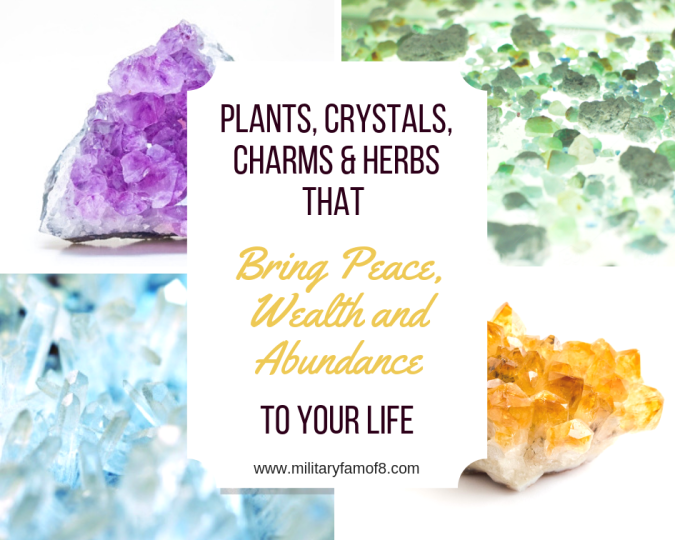 If you're looking for Plants, Crystals, Charms & Herbs that Bring Peace, Wealth and Abundance to your Life, you've come to the right place. Many people have experienced the benefits of these items, so it has intrigued me to do some research. Learn about: Amethyst, Crystal, Jade, Ginger, Allspice, Citrine, money tree, and so many more items in our post!