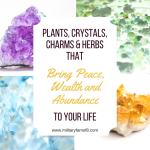 Plants, Crystals, Charms & Herbs that Bring Peace, Wealth and Abundance to your Life