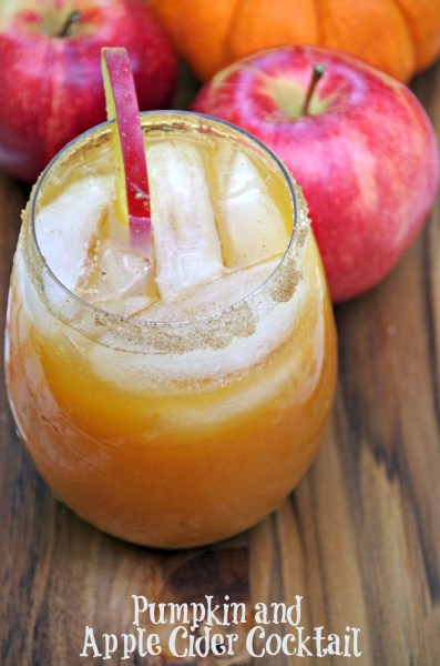 Pumpkin and Apple Cider Cocktail Ultimate List of Holiday Cocktail & Mocktail Recipes