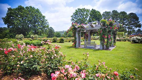 Atlanta Botanical Garden Concerts 2013