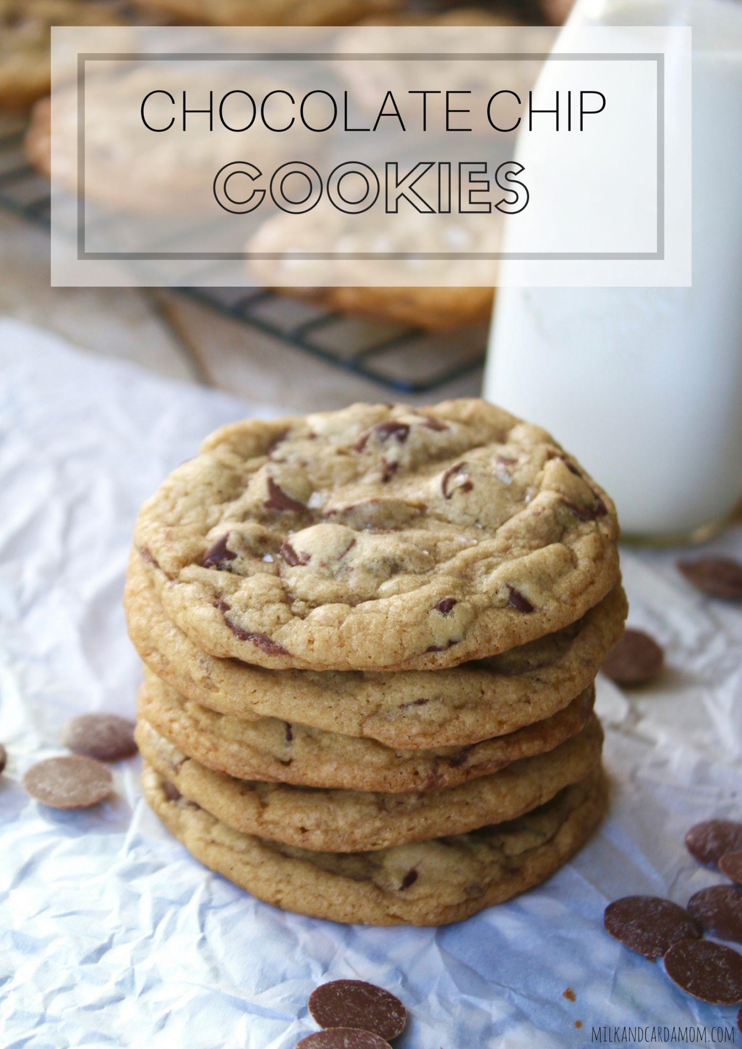 The Science Behind the the Perfect Chocolate Chip Cookie! | Milk ...