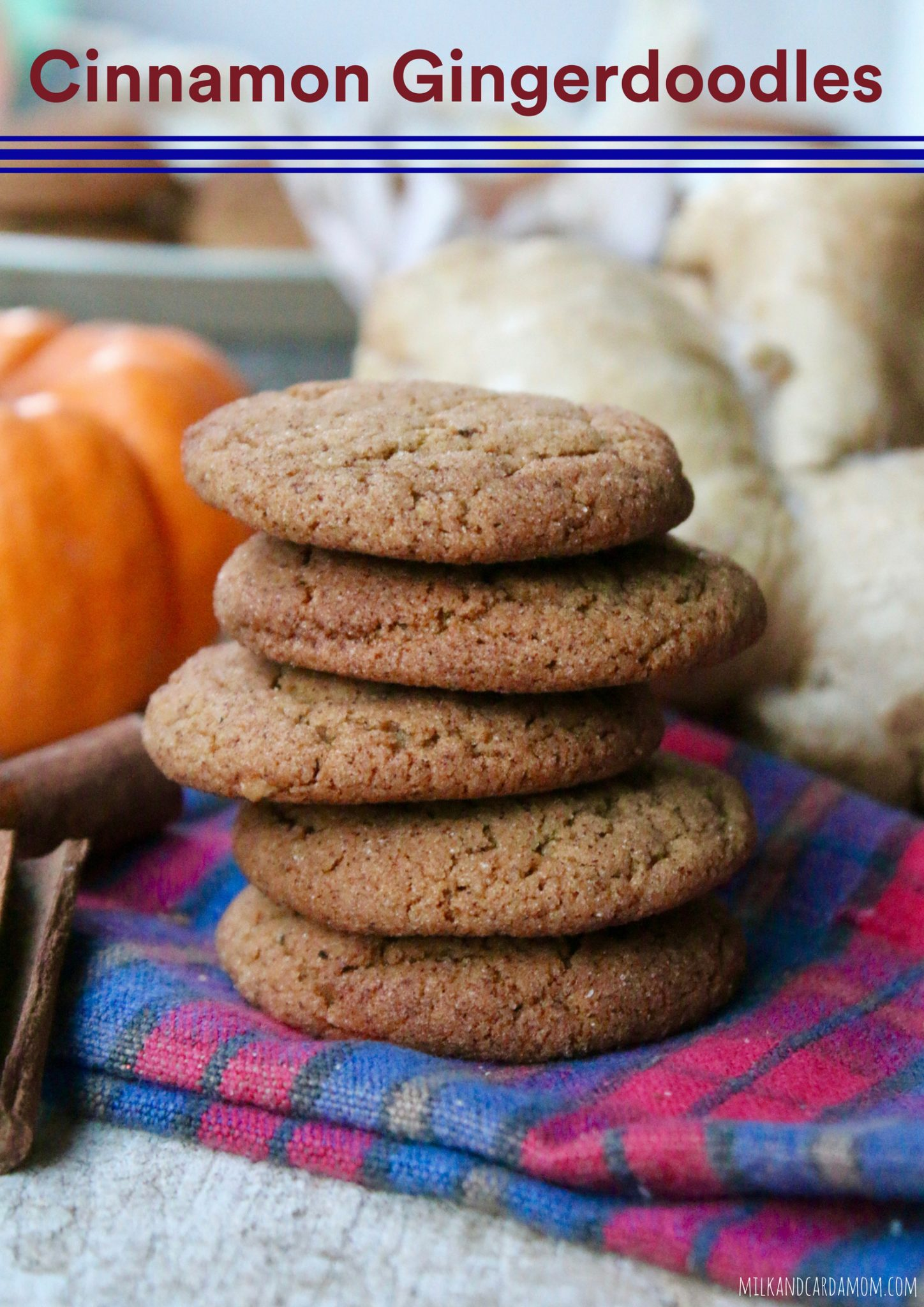 Cinnamon Gingerdoodles