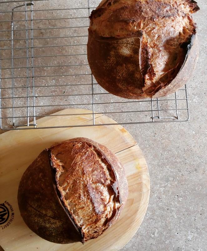 homemade organic sourdough bread