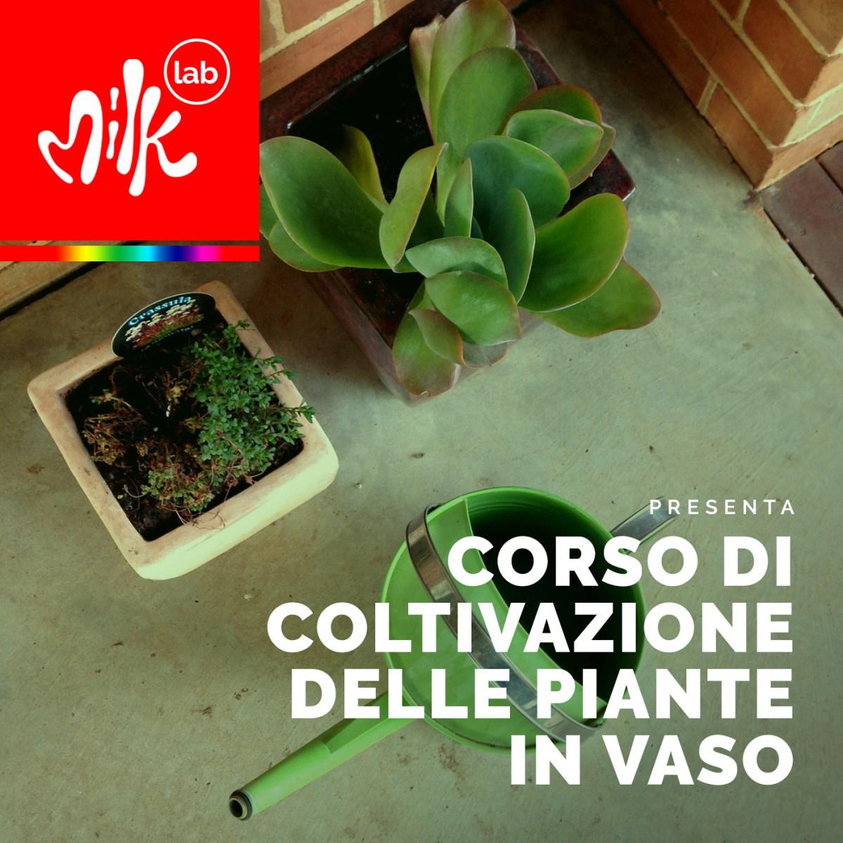 corso di coltivazione delle piante in vaso