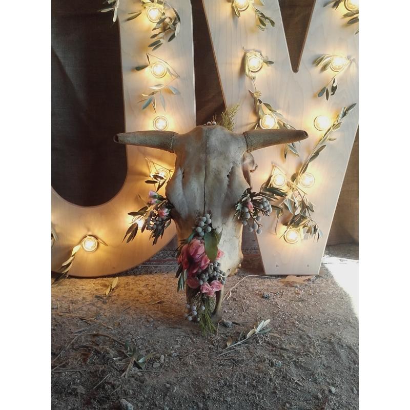Iluminacin para bodas y eventos  Millan Pro
