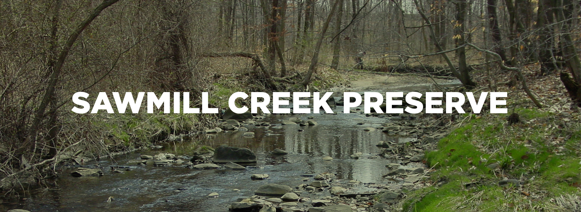 Sawmill Creek Park