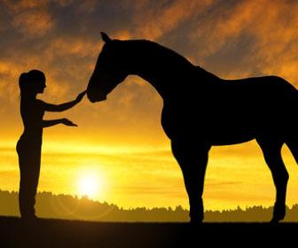 La doma del cavallo