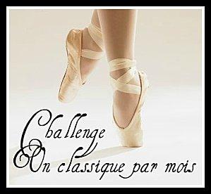 https://i0.wp.com/www.milleetunefrasques.fr/wp-content/uploads/2014/01/Challenge-classique-4.jpg