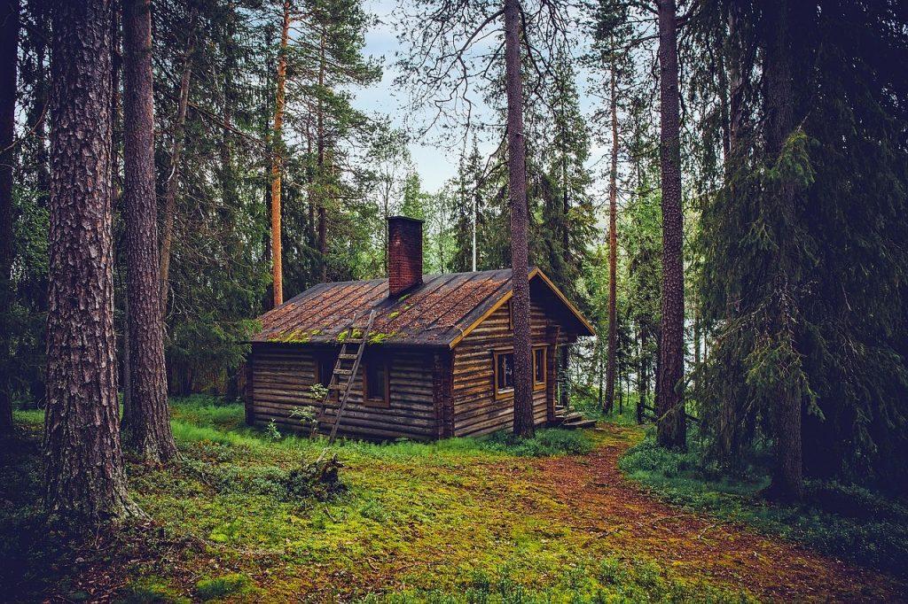 d161d34858867f Let s Go Exploring! How the Finns Beat Winter - Millennial Revolution
