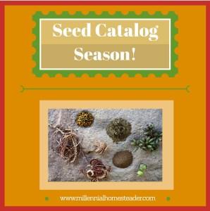 Seed Catalog Season!~2