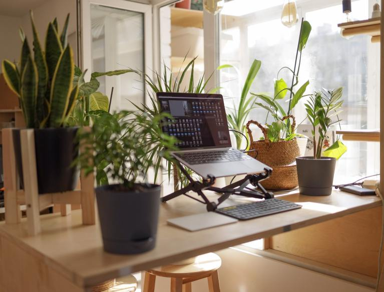 7 Helpful Work From Home Tips To Increase Your Productivity & Motivation