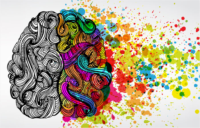 illustrated swirls representing a brain with one side colored to represent creativity in the mind