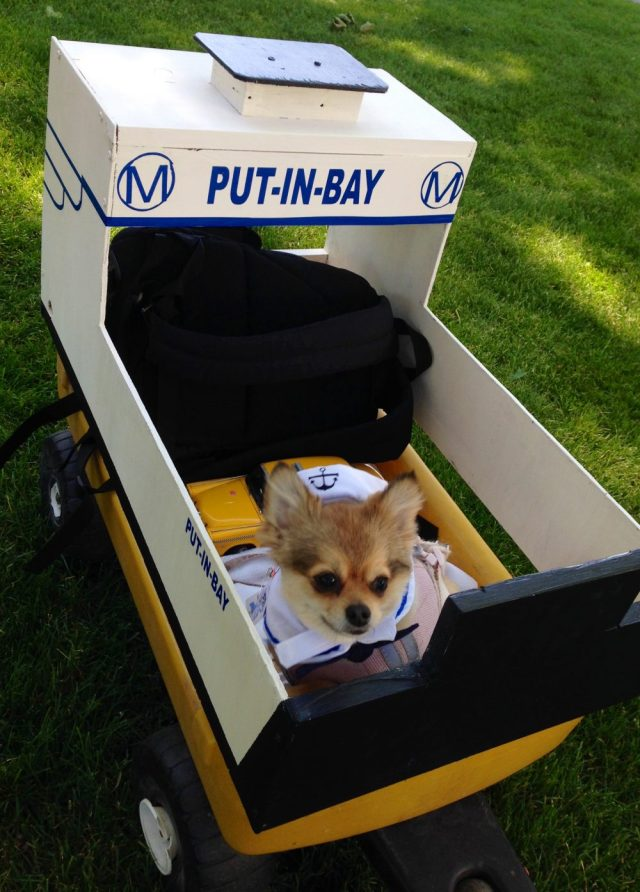 Put in Bay Miller Ferry Pooch Parade dog in mini ferry