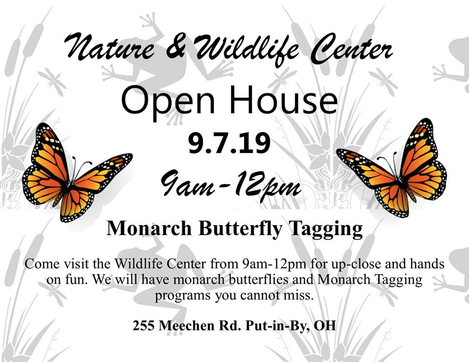 Miller Ferry : Monarch Butterfly Tagging