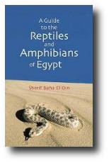 A Guide to the Reptiles and Amphibians of Egypt ds