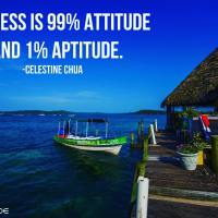 Success is 99% attitude and 1% aptitude. - Celestine Chua