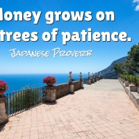 Money grows on the trees of patience.