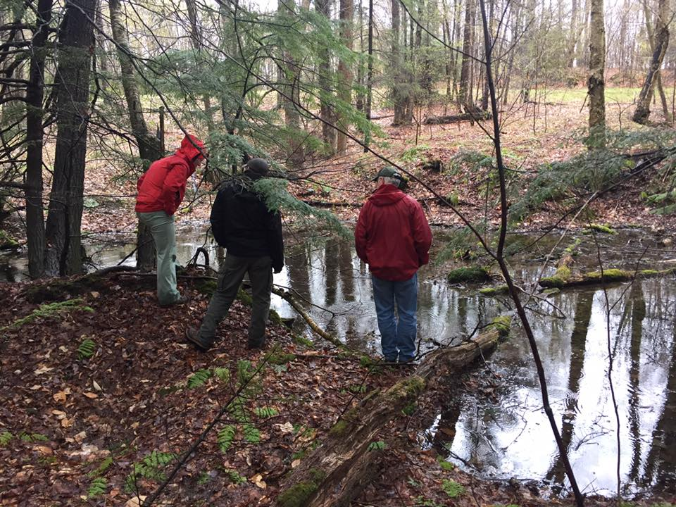 Vernal Pools – Scouting the New Trail