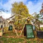 York Design Week Re-Wild Geodome 26 October milnerCreative