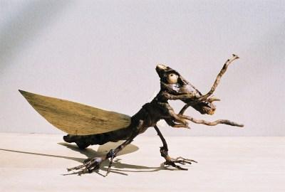 Insectus bizarrus