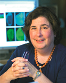 Dr. Stefanie N. Vogel, Ph.D.