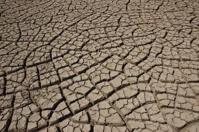 Cracked earth near Dholavira