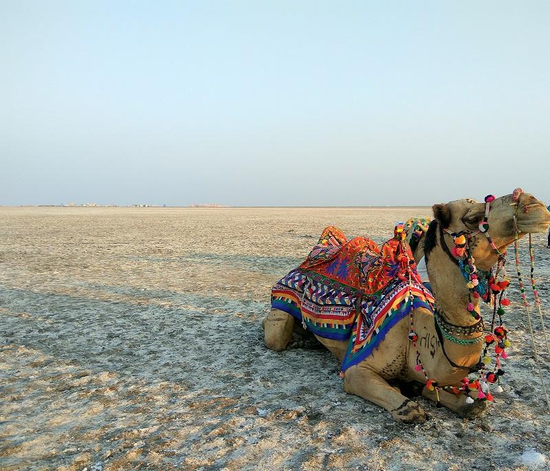 The Harrapan city of Dholavira in Kutcha desert of Western India