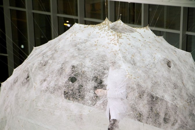 Mothering nature.  Dome built using silkworms by Neri Oxman