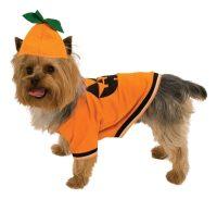 Best dog costume for halloween 2017 | Mimi & Tara