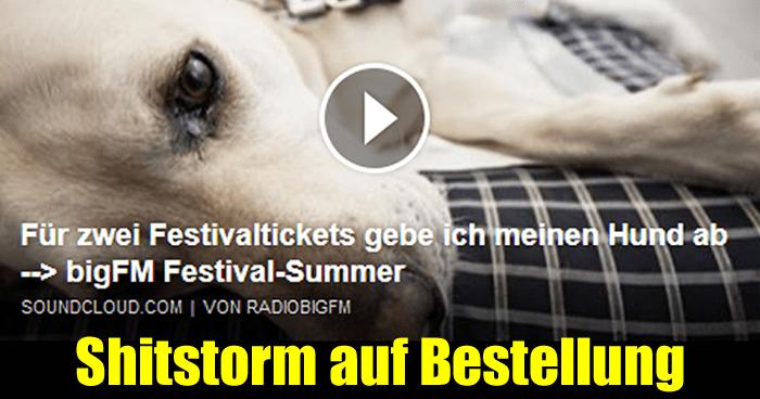 Verkaufe Hund für Festivaltickets