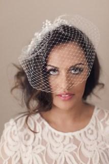 Birdcage Net Veil 2