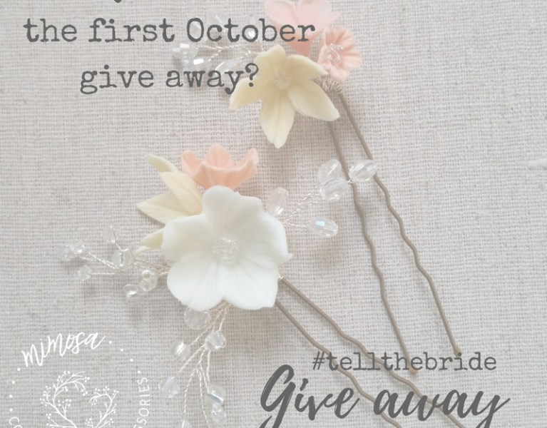 Wedding Hair Accessory Give Away