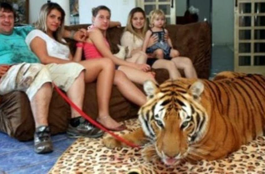 ¿Porque  a las personas  les gustan convivir con animales salvajes?