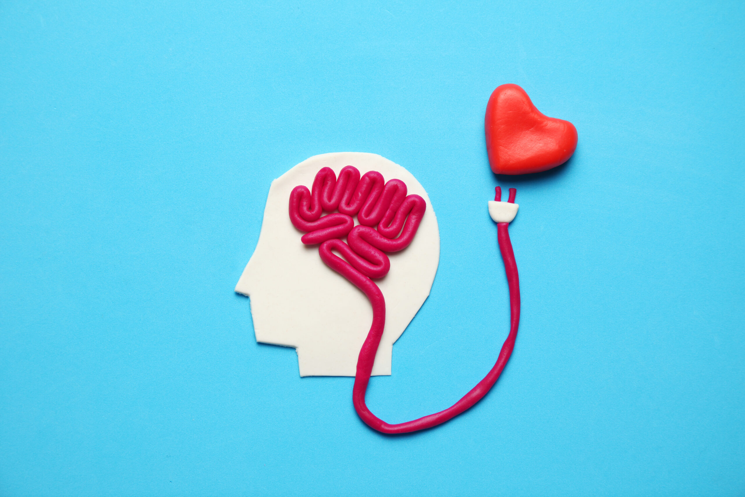 Why Your Brain Loves Kindness