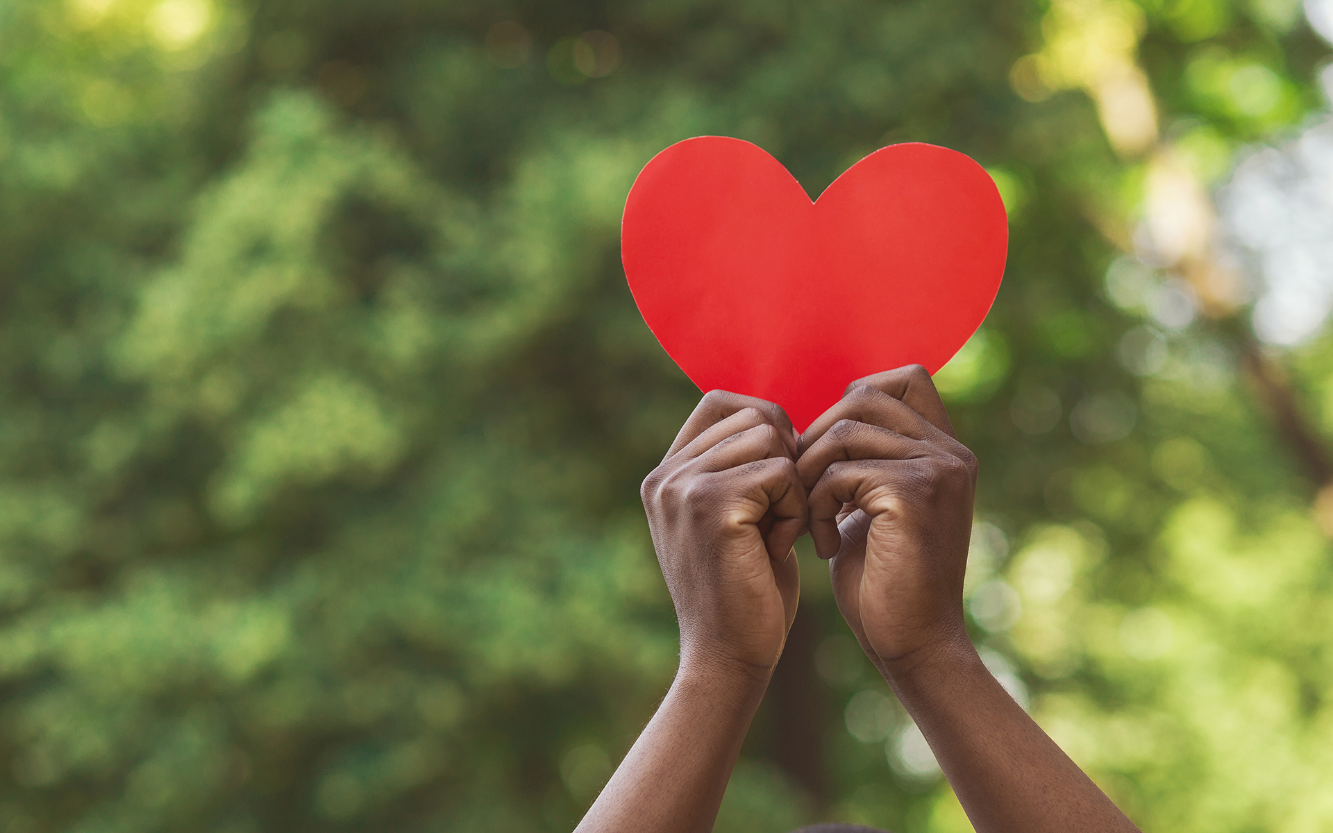 Guided Meditation: A Moment of Loving-Kindness - Love, charity and kindness concept. African-american millennial guy holding red paper heart on green nature background, empty space