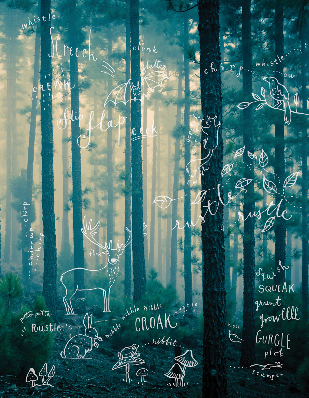 illustration of forest with text overtop