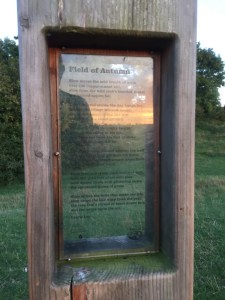 Laurie Lee Poetry Posts:Swifts Hill - Field of Autumn