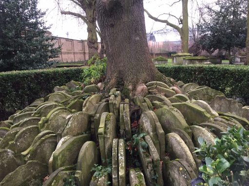 Continental Railway Journeys: The Thomas Hardy tree and gravestones.