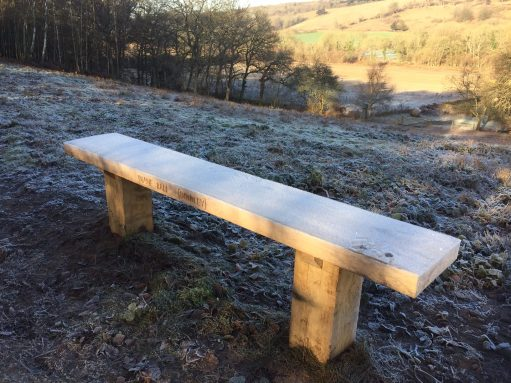 The Bench: A frosty morning in February.